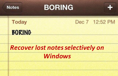 recover_lost_notes_selectively_windows