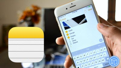 backup_iphone_notes_contacts