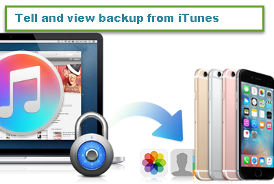 view-iphone-6-itunes-backup-data